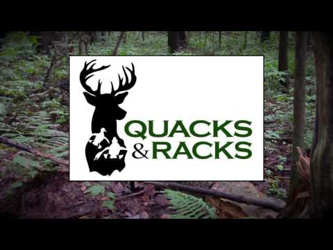 IGNITOR Lighted Nocks Product Review 3 Piece Lighted Nock