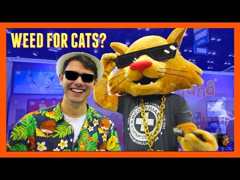 THIS CAN'T BE LEGAL?.... Weed For Cats | Orlando Pet Expo 2018