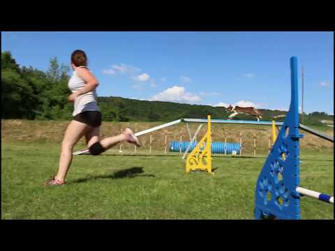 Running contacts + Agility training /16months old LUJZA