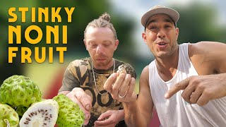 STINKY Noni Fruit and Strongback taste test with @MDOT R from @cook and vibe (and Ratty)!