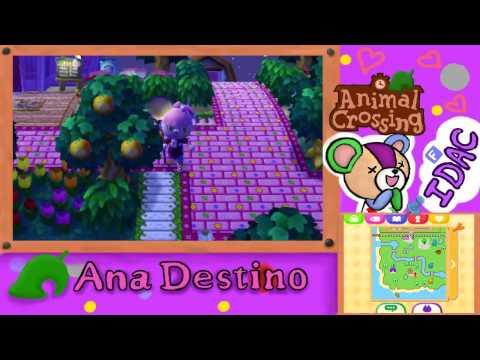Animal Crossing New Leaf - ¡Los fuegos artificiales! y ¡Así se caza la tarántula!