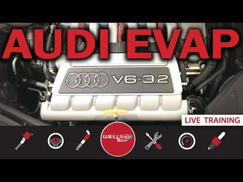 How To Diagnose And Fix An EVAP Leak On An Audi TT / VW  System - P0446, p0455, p0456