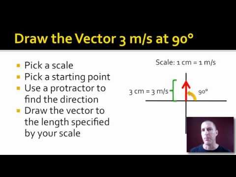 Vector Basics