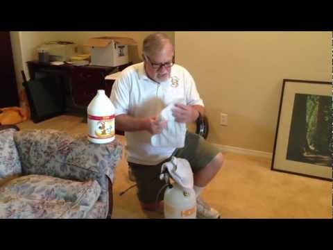 How to remove dog urine from carpet