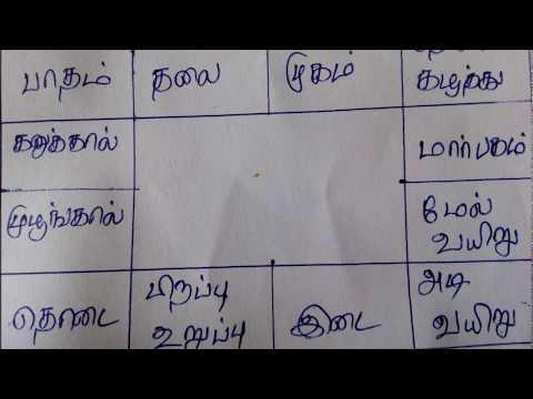 Rasi Chart Basics | ராசி கட்டம் | Rasi Kattam in Tamil