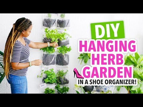 DIY Indoor Herb Garden in a Shoe Organizer! - HGTV Handmade