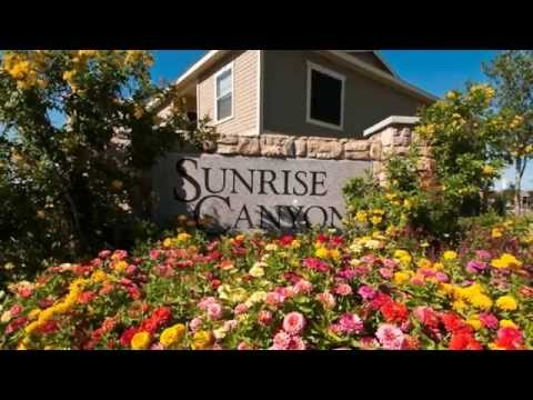 Sunrise Canyon Apartments in Universal City, TX