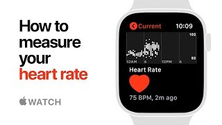 Apple Watch Series 4 — How to Measure your Heart Rate — Apple
