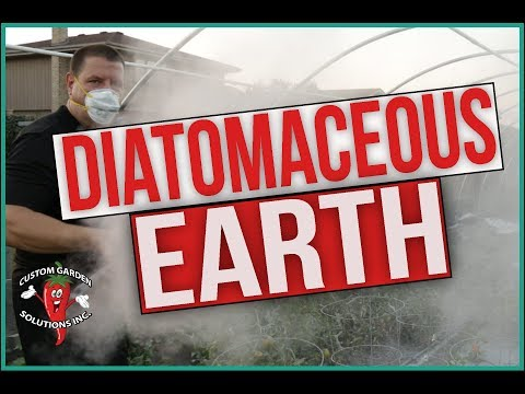 Diatomaceous Earth in the Garden - What is DE and how to use it