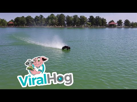 RC Truck Meets Water || ViralHog