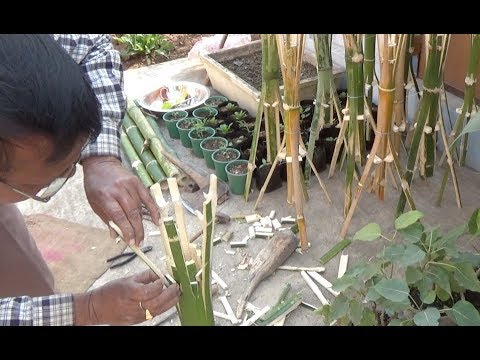 How to make bamboo tree pot stand (with english subtitle)