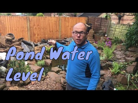 Pond Water Level Dropping - New Garden Pond Water Levels