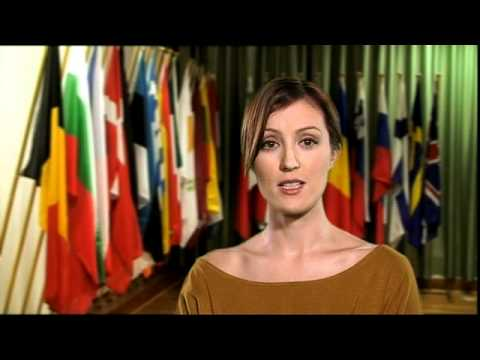 EU Single Market   - a definition