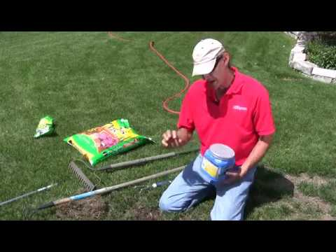 How to Plant Grass to Fix a Bare Spot