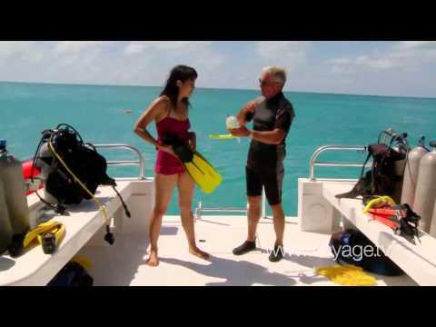 Travel - Underwater Adventure - Tucker_S Point Dive, Bermuda