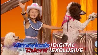 Unbelievable Animals Take Over The AGT Stage - America