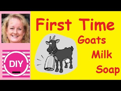 How to Make Goats Milk Soap For Beginners
