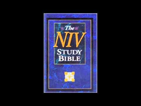 The Book of Proverbs (NIV Audio Bible Non Dramatized)