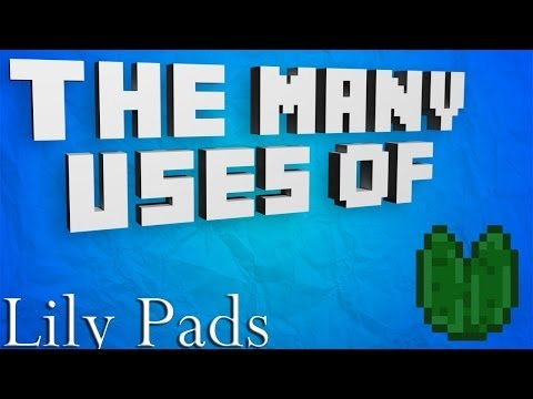 secret lily pad code!