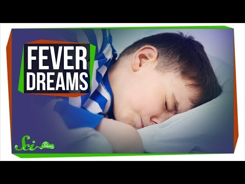 What Are Fever Dreams?