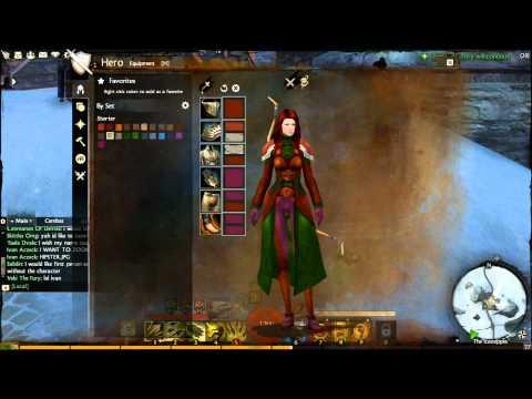 Guild Wars 2 Armor Dye System