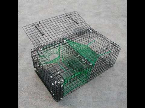 Collection of Lobster Traps, Cuttlefish Traps and Prawn Traps