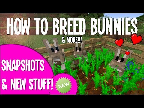 HOW TO BREED & TAME RABBITS IN MINECRAFT!!! (BUNNIES)