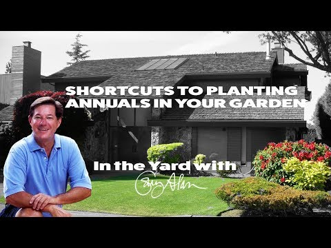Shortcuts to help you plant annuals - In the Yard with Gary Alan