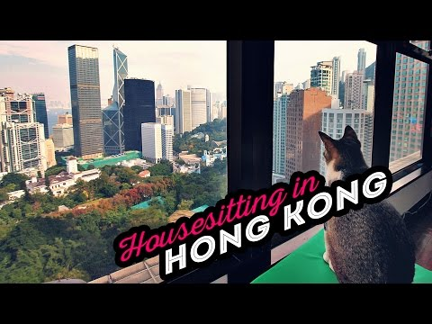 House Sitting with Trusted Housesitters in Hong Kong