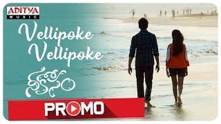 Vellipoke Vellipoke Song Promo   Nee Kosam Songs   AvinashKokati   SrinivasaSharma