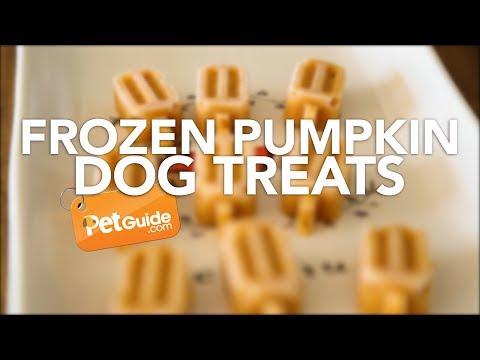Frozen Pumpkin Dog Treat Recipe
