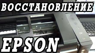 Что делать, если не печатает принтер  Epson L800. Щадящее восстановление за 4 дня.