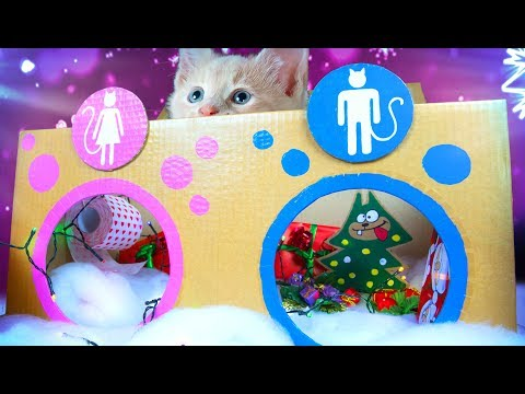 Decorating The Cat Toilet For Christmas | DIY Crafts for Kids on Box Yourself