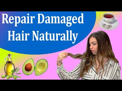 How To Cure Your Damaged Hair Naturally -  Damaged Hair Treatment At Home