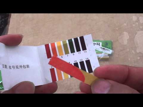Test your Body pH Level using the pH Test Strip (Acid Alkaline)