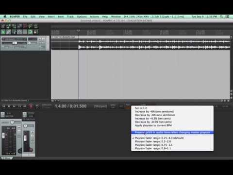 How to Slow Tunes Down with REAPER (free!) for Learning By Ear