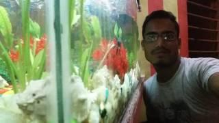 Khurshid Ali