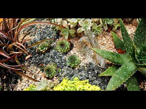 [Garden Ideas] how to build a rock garden