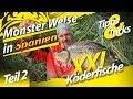 Monster Welse in Spanien   Teil 2   XXL Köderfische zum Wallerangeln   Bojenangeln auf Wels