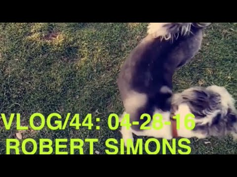 ROBERT SIMONS #44 - !!EXTREME!! TEAM MANAGEMENT