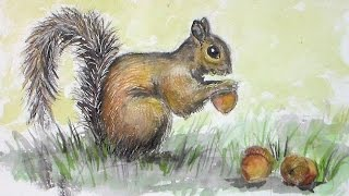 How To Draw A Squirrel With Watersoluble Graphite