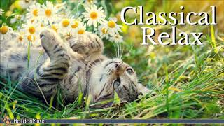 Classical Music for Relaxation