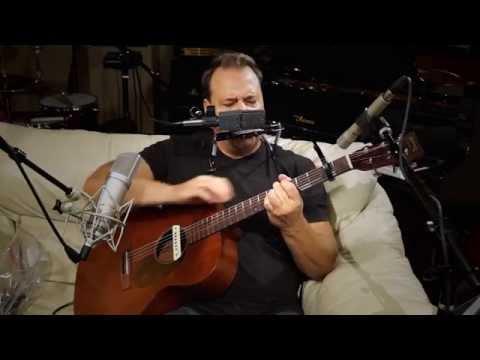 Hotel California -Guitar Harmonica solo