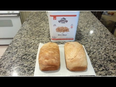 Bulk Wheat Storage to Loaf Bread - Survival Solutions