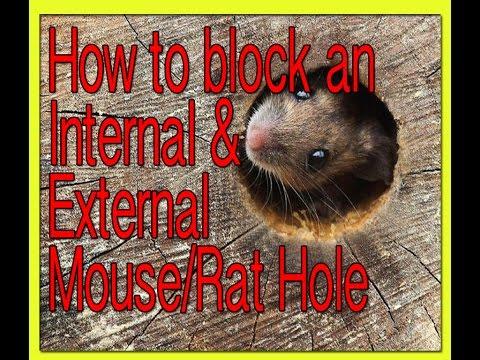 How to block an internal/external Mouse or Rat Hole.