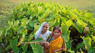 BHAPE KACHUR LATI ||| Steamed Farm Fresh Arum Root Prepared by our Granny