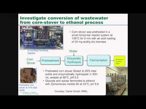 Microbial Electrolysis for Renewable Hydrogen Production