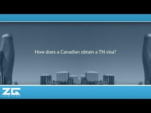 How does a Canadian obtain a TN visa?