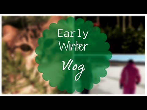 FUN EARLY WINTER VLOG   Allie Young