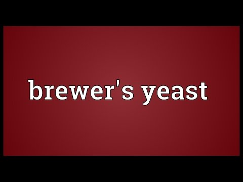 Brewer's yeast Meaning